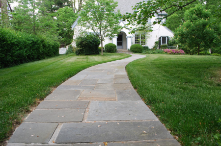 Lawn + Curb Appeal